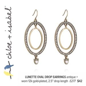 🆕 Lunette Oval Drop Earrings c+i E277